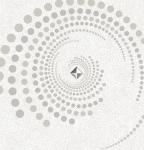 GDT ZENITH 88031-1 - Vòng xoắn tinh nghịch