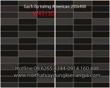 Gạch ốp tường American 250x400 W4313D