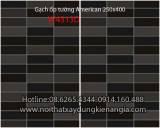 Gach-op-tuong-American-250x400-W4313D
