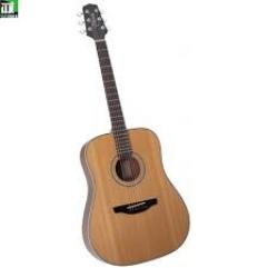 Guitar 125