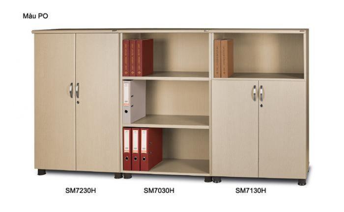 Tủ hồ sơ THS010