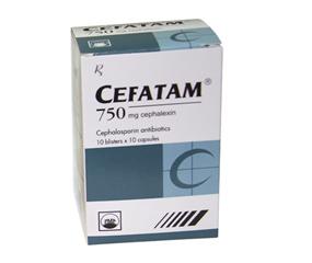 CEFATAM 750