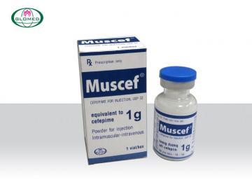 MUSCEF - Bột pha tiêm