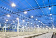 Hướng dẫn kiểm tra đèn led nhà xưởng giá rẻ có đảm bảo chất