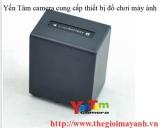 Pin Sony FV100