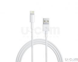 Lightning to USB Cable 1 met (chính hãng)